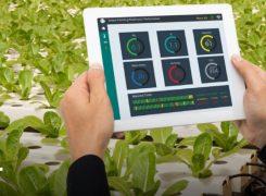 معرفی ۸ تکنولوژی جذاب مورد استفاده در کشاورزی هوشمند
